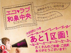 mibayashi_480_2