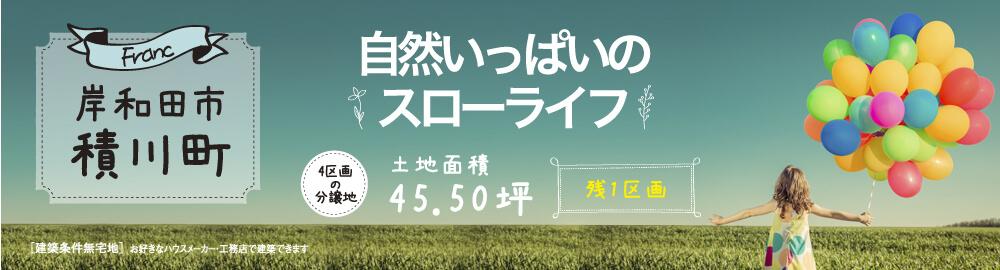 積川町【残1区画】