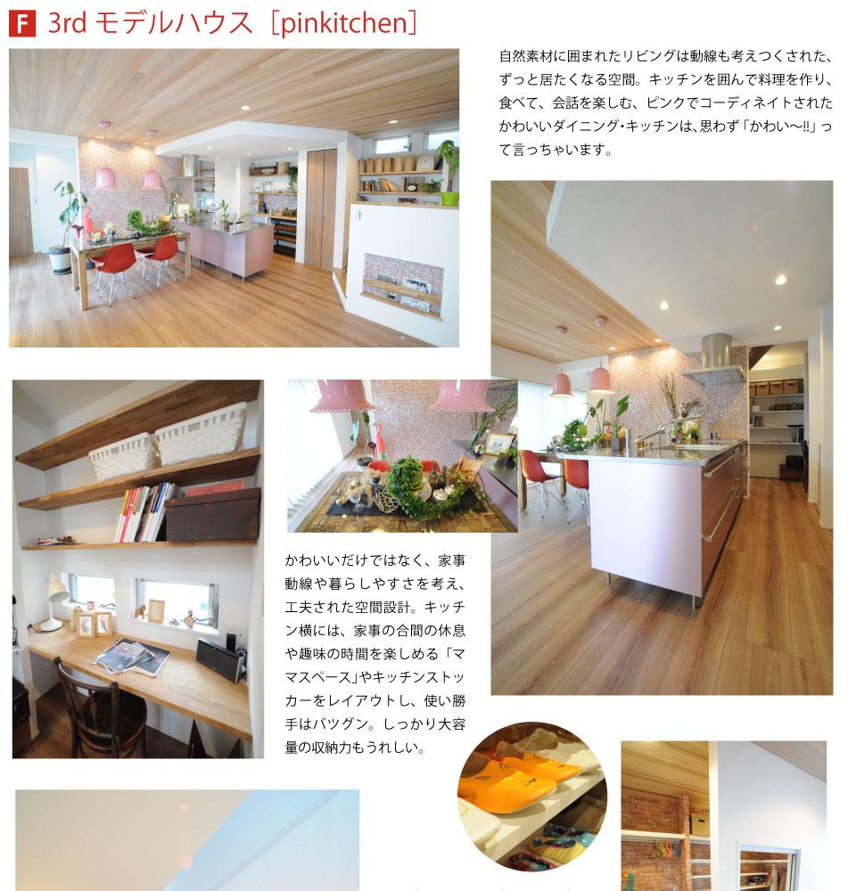 3rd_model_01