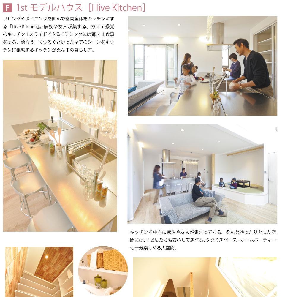1st_model_01