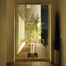 玄関正面には大窓を配し、シンボルツリーを植栽したウッドデッキへと視界が抜けていく